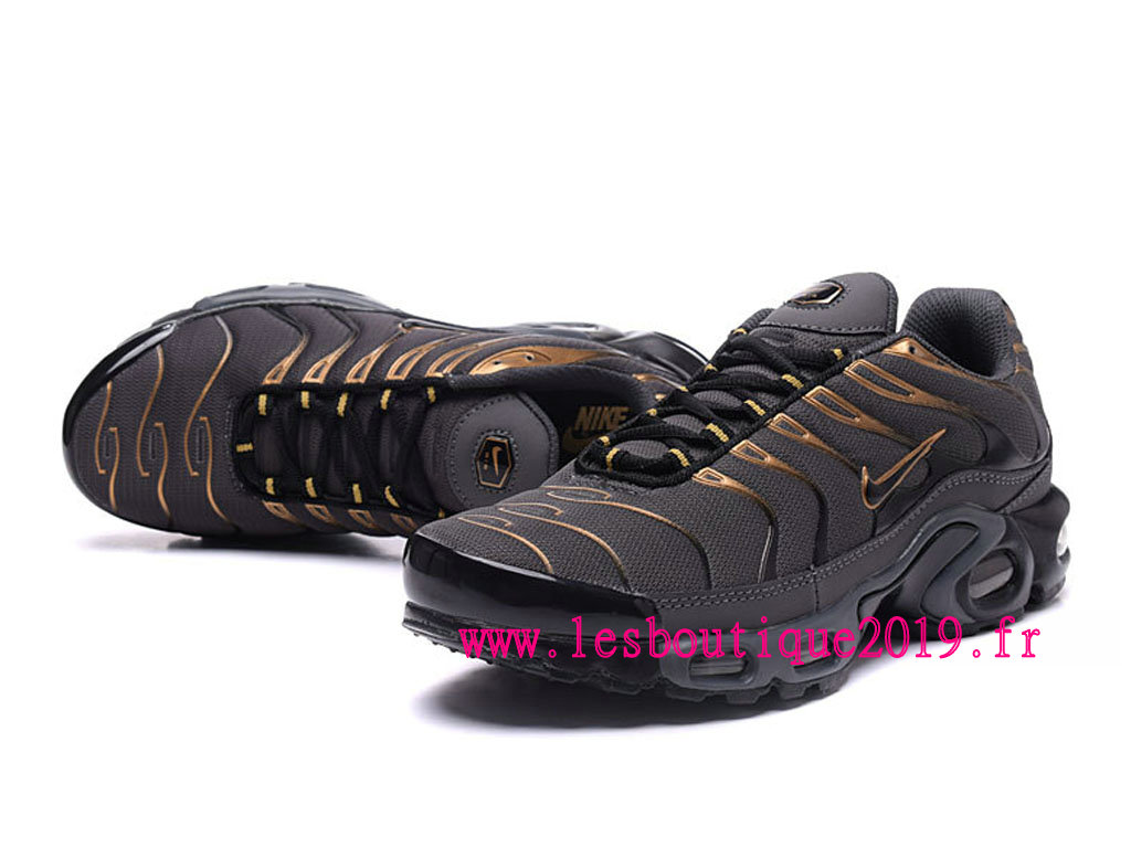 Nike Air Max Plus Gris Or Chaussures Nike Running Pas Cher Pour Homme
