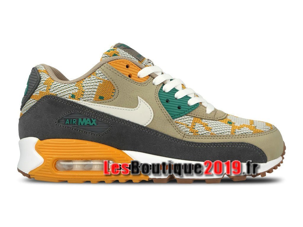 Nike Wmns Air Max 90 PA Gris Brun Chaussures Nike Running Pas Cher Pour Femme/Enfant 749674-700G
